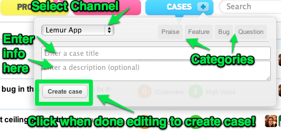 Fill out the mini case editor with all the case details.